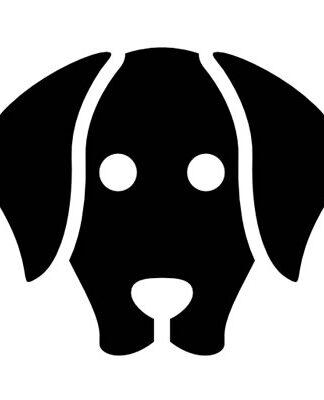 Animal DVD with Dog