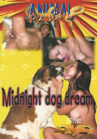 midnight dog dream 1